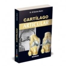Cartílago Articular